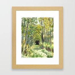 Briars Trail, Sept 14 Framed Art Print