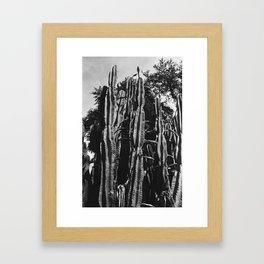 Angry Cactus Framed Art Print