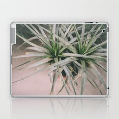 Air Plant #1 Laptop & iPad Skin