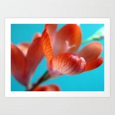 Wild Orange Freesia Art Print
