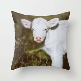 White Calf (Color) Throw Pillow
