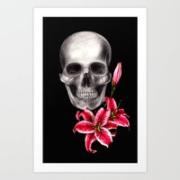 Lily on black Art Print
