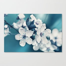 Sping 255 Canvas Print