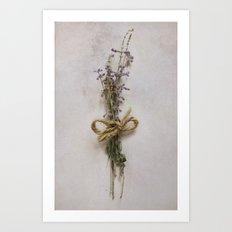 Studies in Flora Art Print