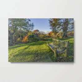 Always Dreaming Metal Print