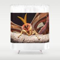 atlas Shower Curtains featuring Attacus atlas by Marcel Derweduwen