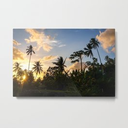 Palm tree at sunset in Moorea island Metal Print