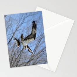 Osprey and Prey - Wildlife Photography Stationery Cards
