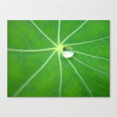 water pearl Canvas Print