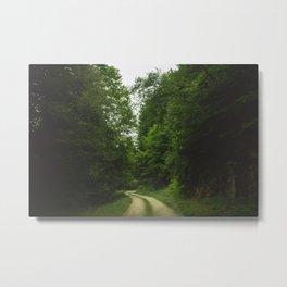 The green path Metal Print