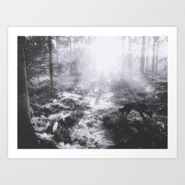 Looking for chanterelles Art Print