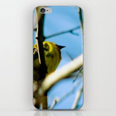 Entwine iPhone & iPod Skin