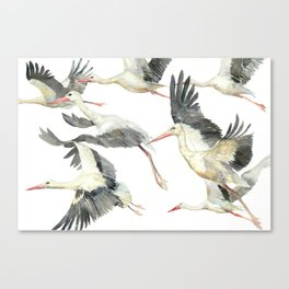 Storks Flying Away, The Last Day of Summer, Flock of Birds Canvas Print
