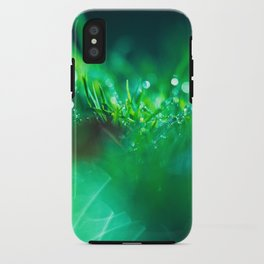 Nature's Beauty iPhone Case