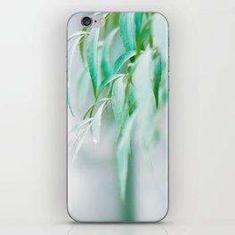 Gentle Greens (Color) iPhone Skin