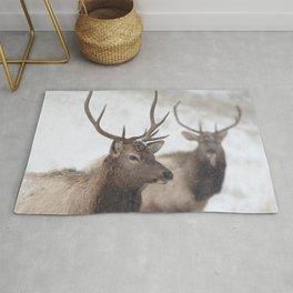 Watercolor Elk Juvenile 19, Estes Park, Colorado, Winter Paws Rug