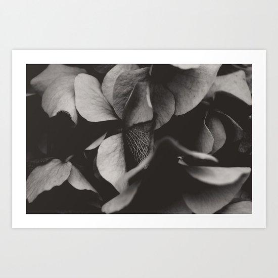 Secret Garden ~ No.1 Art Print
