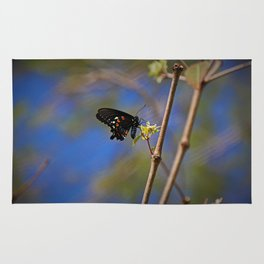 Spicebush Swallowtail I Rug