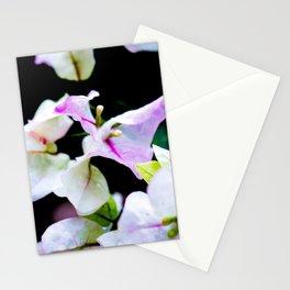 El Jardín De Doña Maco (I) Stationery Cards