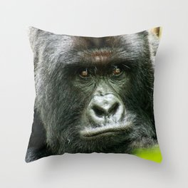 Silverback starring at you Throw Pillow