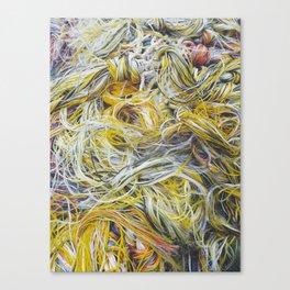 Worm Hole Canvas Print