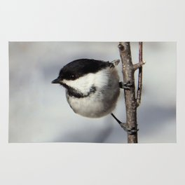 Black-capped Chickadee Rug