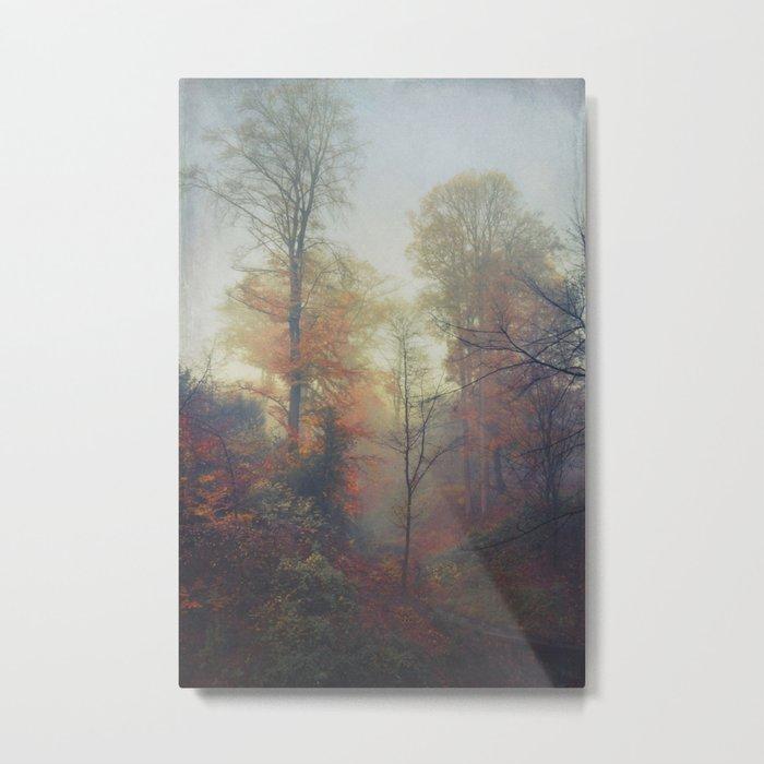 Last colors Metal Print
