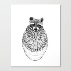 Raccoon- Feathered Canvas Print