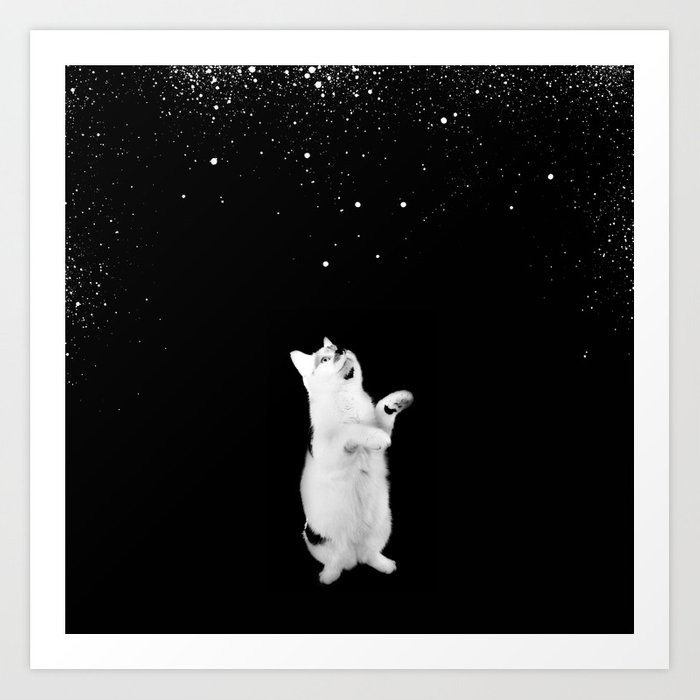 Kitty See Snow Art Print