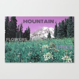 Mount Rainier With A Twist Canvas Print