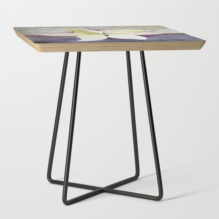 Lily_Side_Table_by_Paula_Giovannitti__Black__Square