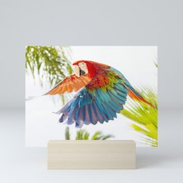Colorful macaw flying Mini Art Print