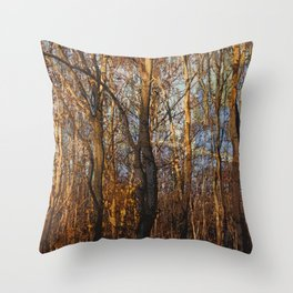 Autumn forest Throw Pillow