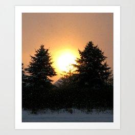 Sunset Over Pines Art Print