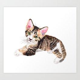 Brown Tabby Baby Cat Art Print