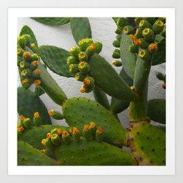 Artsy Cactus Flowers Art Print
