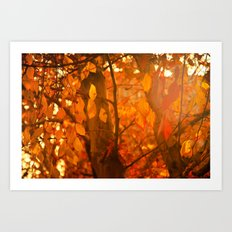 Fire  Fantasy Art Print