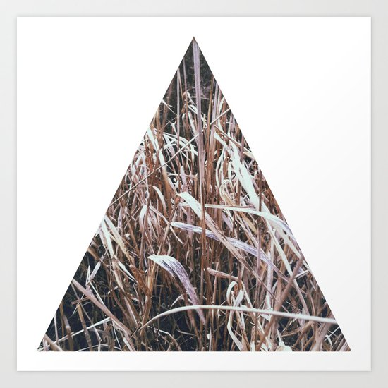 Grass, tall and brown Art Print