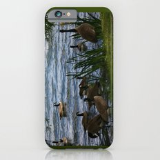 Gaggle Slim Case iPhone 6