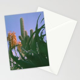 Cactus Cooler Stationery Cards