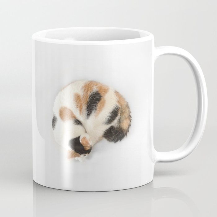 Sleeping Calico Cat Coffee Mug