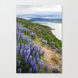 Mountainside View Canvas Print