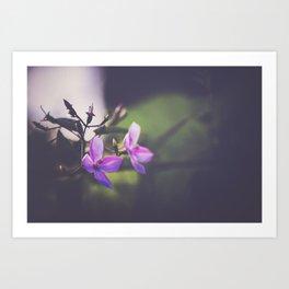 Hawaii Flora v.2 Art Print