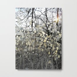 Winter's patterns IV Metal Print