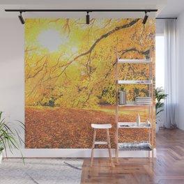 New York City Autumn Sun Wall Mural