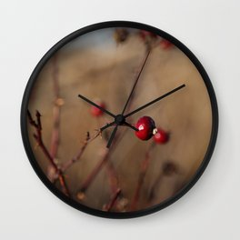 Burgundy Red Rose Hips on Brown and Blue Wall Clock