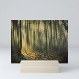 Shaft of Morning Light Mini Art Print