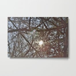 What is old can be beautiful Metal Print
