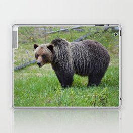 Grizzly encounter in Jasper National Park Laptop & iPad Skin