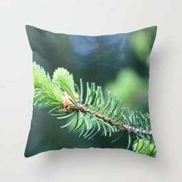 Spruce branch in spring. Throw Pillow